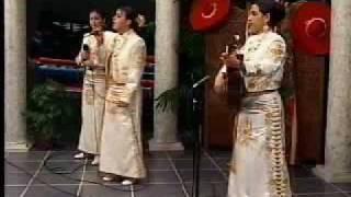 Tu Solo Tu - mariachi style