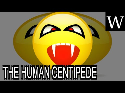 THE HUMAN CENTIPEDE (FIRST SEQUENCE) - WikiVidi Documentary