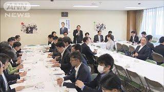 """""""あおり運転""""罰則強化を検討へ 自民党(19/08/22)"""