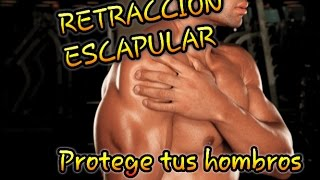 Retracción escapular - Protege tus hombros | Lesiones #1 (1/2)