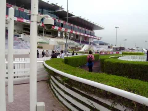 Nad al Sheba, the day before the DWC