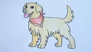 วาดรูปสุนัข โกลเด้น  How To Draw Golden Retriever Cartoon Easy for Kids Step by Step Coloring Pages