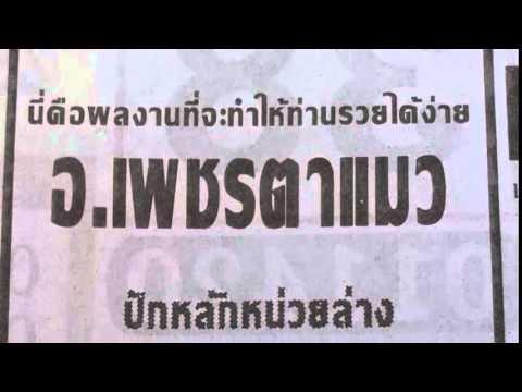 เลขเด็ดงวดนี้ อาจารย์เพชรตาแมว 2/06/58