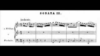 J.S. Bach - BWV 527 (1) - Sonata III - Andante d-moll / D minor