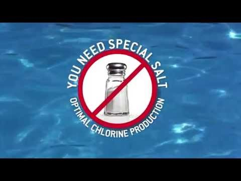 Salt Or Chlorine: Which Is Better For Your Pool?