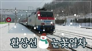 겨울 기차여행 환상선 눈꽃열차 강원도 가족여행 브이로그