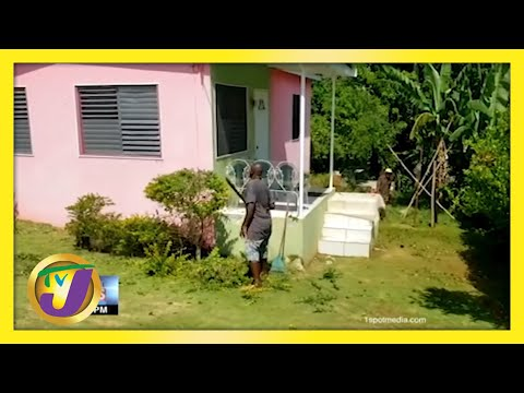 Jamaicans Labour at Home   TVJ News