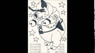 Schweine im Weltall - Die erste Delle für die neue Welle [Tape]