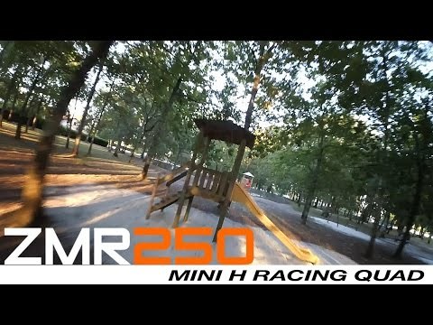 ZMR 250 - Crash session in the wood