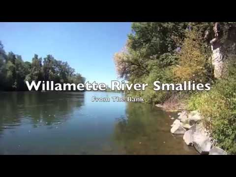 Smallmouth Bass fishing on the Willamette River
