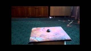Трельер фильма: черепашка Пашка