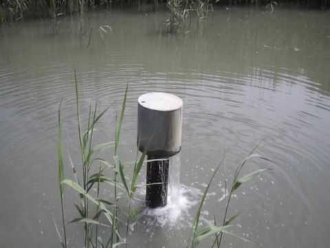 flood reedbeds Yes Reedbeds Ltd
