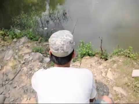 Fishing day of Thailand ตกปลานิล