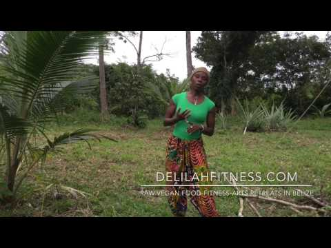 Raw Vegan Foods Retreats in Belize
