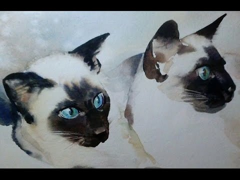 Diane Banks: Gorgeous Siamese Cat Cats Painting Ebay Auction Proceeds Ovarian Cancer : Disney Songs