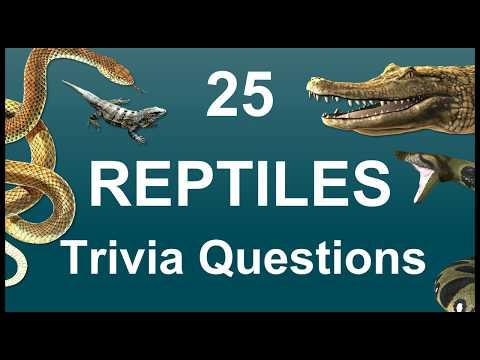 25 Reptiles Trivia Questions | Trivia Questions & Answers |