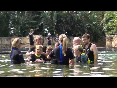 discovery cove 2015