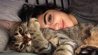 Девушка нашла под скамейкой бездомного кота, и через некоторое время он отблагодарил ее за добро