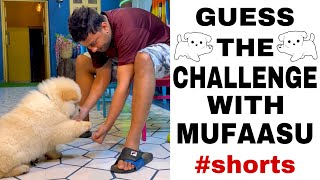 GUESS THE CHALLENGE WITH MUFASA 😍 #shorts