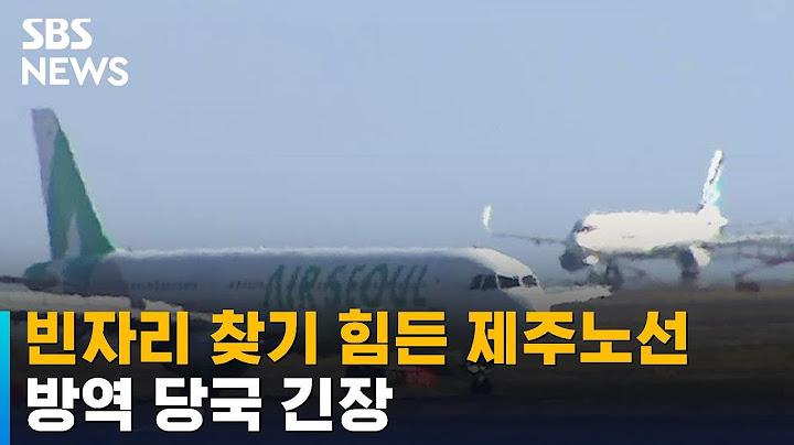 제주항공 국내선 운항 편수 100편↑…관광객 2배 늘었다 / SBS