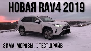 Toyota RAV4 2019 // Stenni Тест-драйв