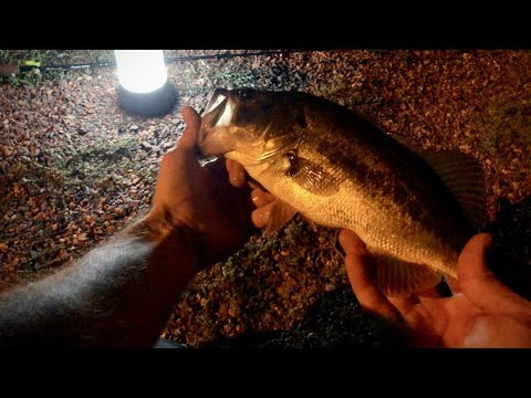 Pond Fishing Tips And Tricks (Fishing At Night!)