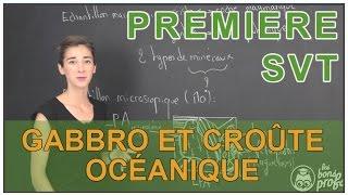 Gabbro et croûte océanique - SVT - 1ère S - Les Bons Profs thumbnail