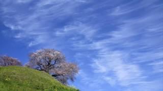 【青い空に】オリジナルソング by 藤城 丈