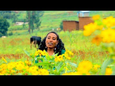 Boontuu Daadhi  – Yaa Abaabilee – New Ethiopian Oromo Music 2019 [Official Video]