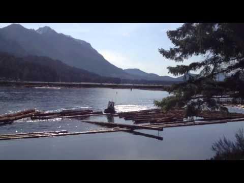 How to Make a Log Boom