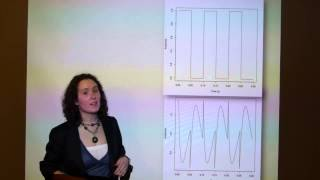 Natascha Hedrich — Phase Correction using Allpass Filters