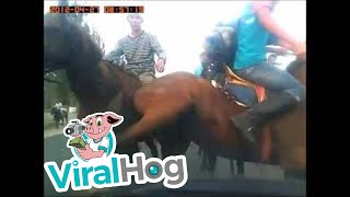 Funny Video: The Cavalry Damages Woman's Car
