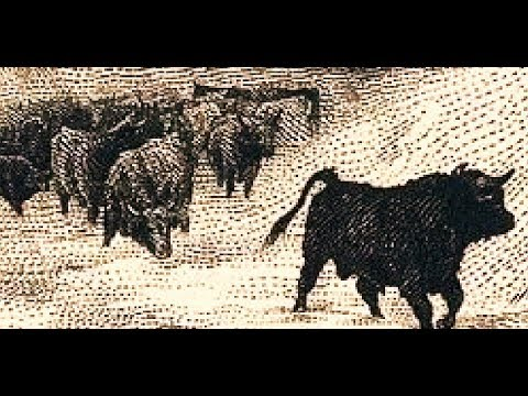 LAND USE IN THE U.S.A. BETWEEN MAN,  CATTLE,  & CROPS