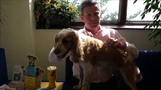 Dogs Trust Respond To Daily Mail Article 28/08/2015