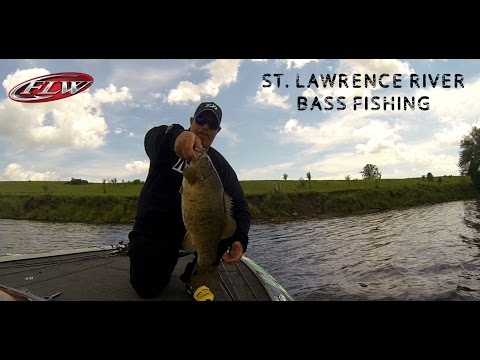 Fish identification dive in st lawrence river doovi for St lawrence river fishing