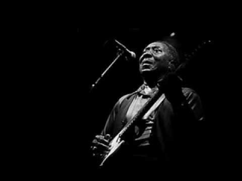 Muddy Waters - I Feel Like Going Home (audio)