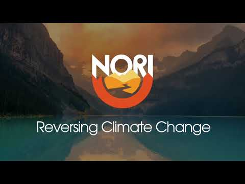 Reversing Climate Change Episode 20: David Hodgson