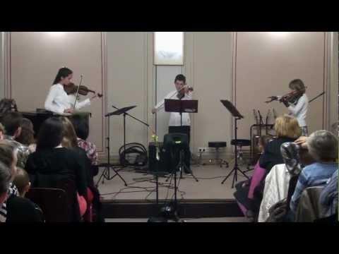 Frühjahrskonzert der Niederlausitzer Musik- und Kunstschule in Luckau 2013