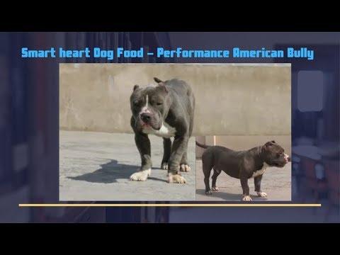 Demo - Smart heart Dog Food - Performance American Bully - Bhola Shola