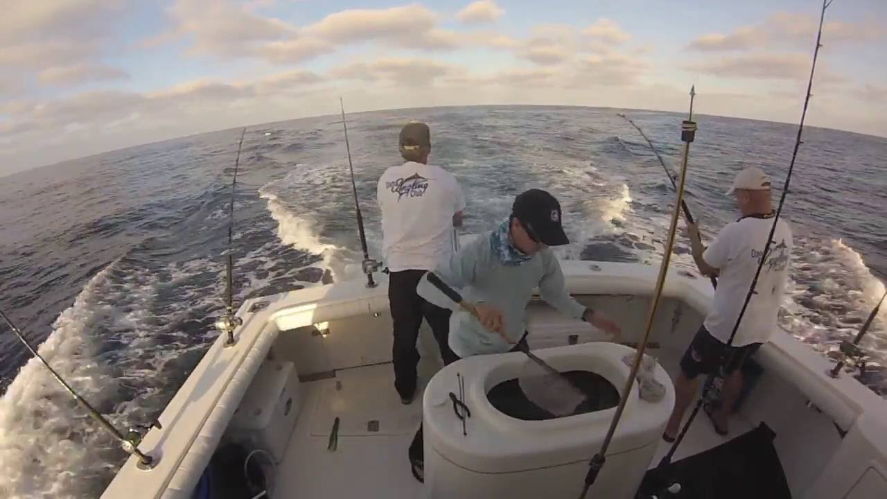 Marlin fishing off san diego mabt 2016 youtube for Fishing license san diego