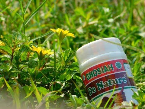 3-obat-sipilis-de-nature-|-obat-kencing-nanah