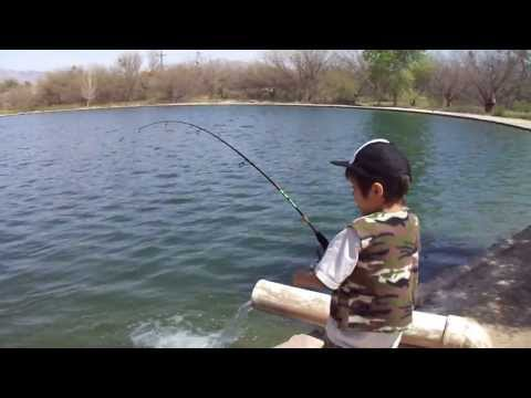 Full download great fishing tucson rv parks bass catfish for Fishing in tucson