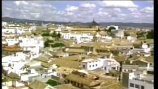 Кордова арабская культура