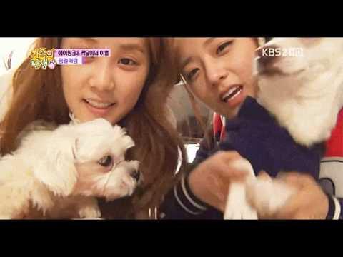 Chorong & Bomi - Chomi