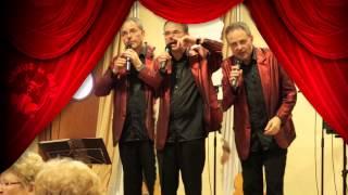 Grup Musical ORGUE DE GATS · 2014 · GATS XOU