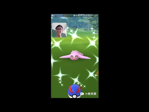 【Pokémon Go】懒人獭社群日   色违在最后一分钟被回收了😭😭