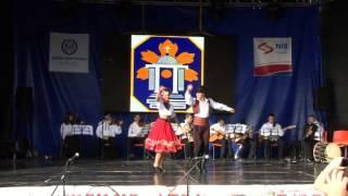 "AKUD ""Ivo Lola Ribar"" Ciganska igra iz Vojvodine"