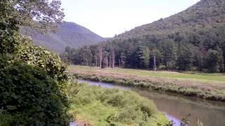 Eagle sighting Pine Creek Trail