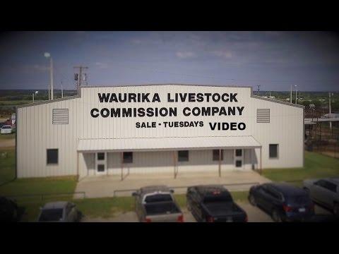 Waurika Livestock Commission