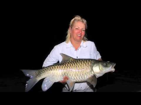 5 Minutes Mahseer Magic